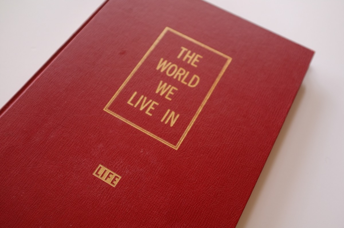 Cover - The World We Live In